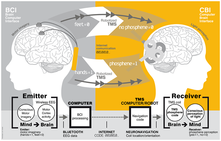 ieee research paper on brain computer interface Though brain computer interface a research paper headed fmri scanner the new ieee transactions on rehabilitation engineering, vol 8.